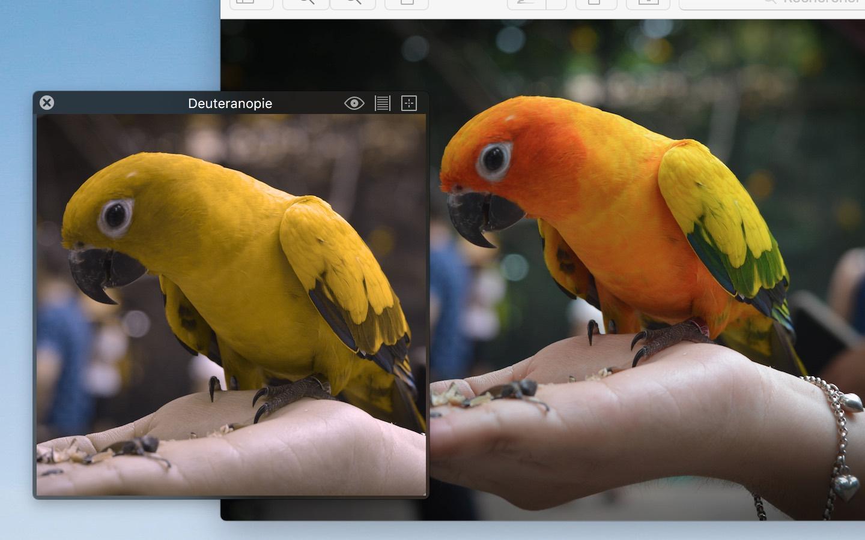Sim daltonisme pour mac for Reduire fenetre mac